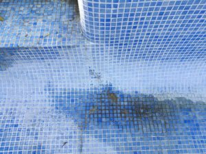 Structural Cracks in Swimming Pool Structure