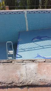 Cracked Pool Malaga